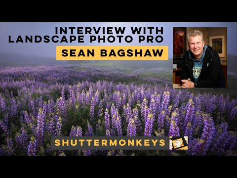 An interview with Sean Bagshaw