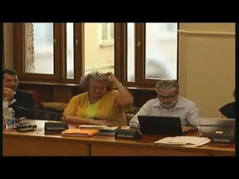 Consiglio Comunale 24 giugno 2019 Moz Bilancio Partecipativo