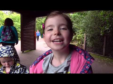 The Ryans At Dublin Zoo  August 2019