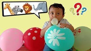 Ayo Main Pecah Balon dan Temukan apa Nama Hewan didalam nya