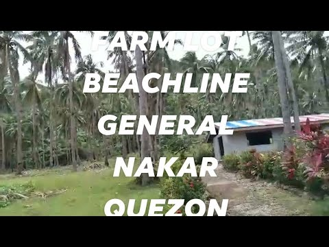 34 HECTARES, 100/SQM, TITLED, BEACH/FARM LOT FOR SALE, NYUGAN, GENERAL NAKAR, QUEZON # 1,022