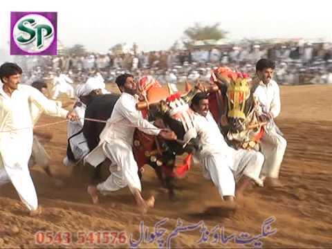 Karah Mureed Chakwal