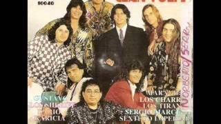 Dario Angora - El macho