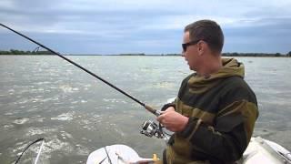 Риболовля на Бузане 2015р. Сазан 4,200 гр.