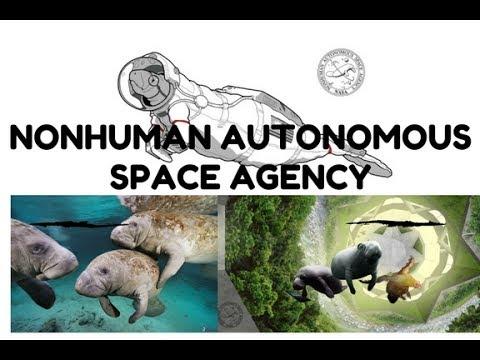 NONHUMAN AUTONOMOUS SPACE AGENCY - CONCEPT LAMANTINI NELLO SPAZIO