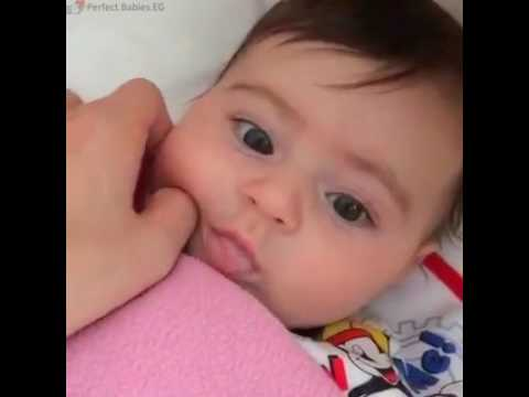 PERFECT BABY (CUTE)