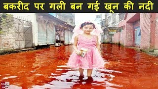 बकरीद पर गली बन गई खून की नदी, सड़कों पर बहा बेजुबानों का खून !! Must Watch !!