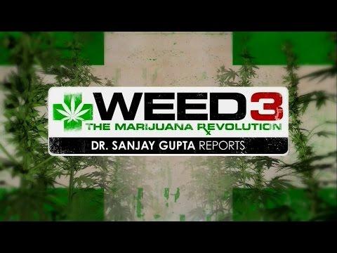 Weed 3 - CNN Special Documentary by Dr. Sanjay Gupta