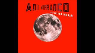 Watch Ani Difranco Star Matter video