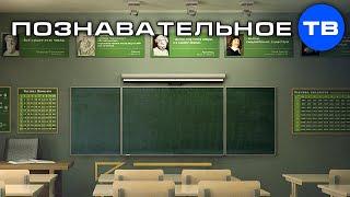 Как вы отдаёте своё законное право чиновникам (Познавательное ТВ, Артём Войтенков)
