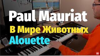 Поль Мория - Жаворонок - Пианино, Ноты / Paul Mauriat - Alouette - Piano Cover видео