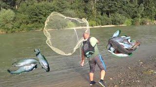 Рыбалка Кастинговой Сетью по ПРОЗРАЧНОЙ воде Самая УЛОВИСТАЯ снасть
