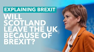 Will Scotland Leave The UK Because Of Brexit   Brexit Explained