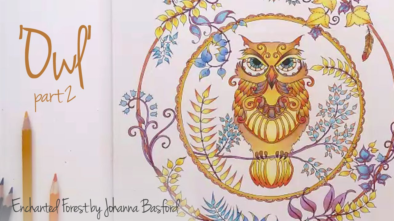 Enchanted Forest Johanna Basford Owl Part 2 YouTube