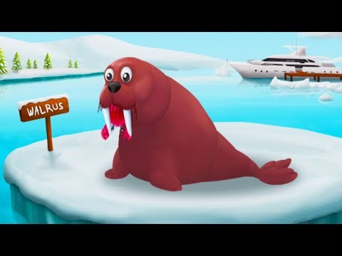 Learn About Arctic Animals Name And Sounds - Winterland Animals Feeding Games For Preschool