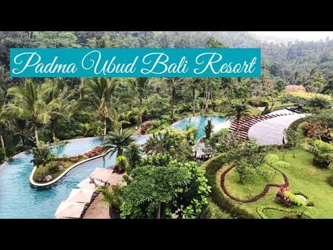 padma-ubud-bali-resort---highly-recommended-||-room-review-||-2019-!!!-#baliindonesia