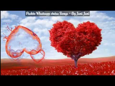 Pashto new whatsapp status song ❤️Starge Ghazal Shunde Ghazal Haroon Bacha whatsapp status songs