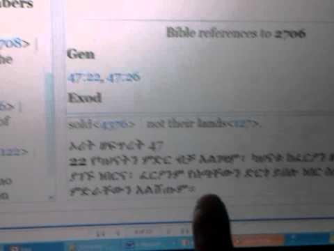 Rasiadonis Explains Hebrew CHUKKATH & Ethiopic HIGG [Haqq] Etymology - HSI Amharic Bible class