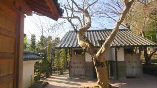 修禅寺・達磨山
