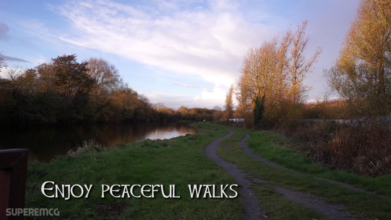 Scenic Walk On Fairy Trail - Cloonfad Scenic Walk, Co
