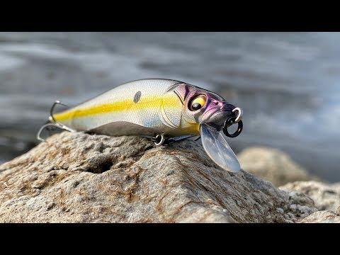 Northern Bass Fishing Lures Underwater
