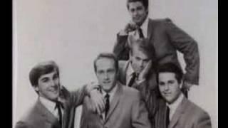 The Beach Boys: Talk about career