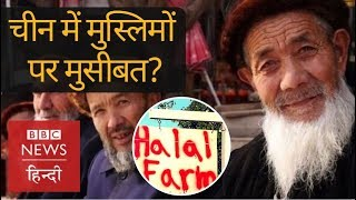 China Uighurs: All you need to know on Muslim 'crackdown' (BBC Hindi)