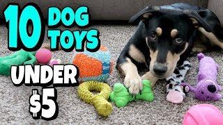 10 Amazon Dog Toys For Under $5 💙 I Am Kristin