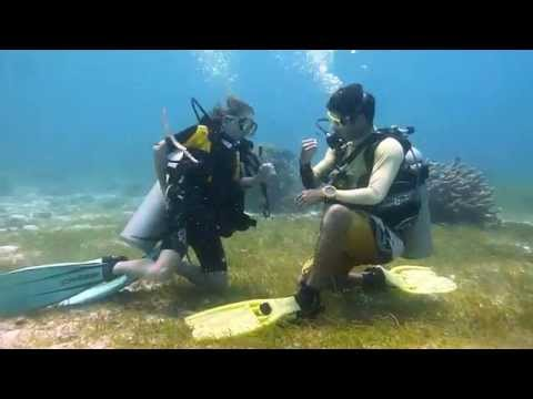 Learn Scuba Diving With Alex In Philippines
