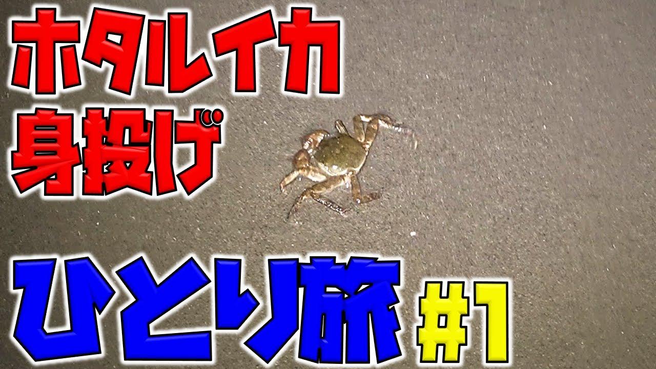 【富山一人旅#1】ホタルイカが身投げするらしいよ!自然の神秘は見れるの?