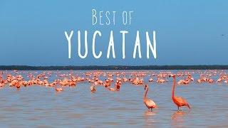 HIGHLIGHTS OF YUCATAN: Mayan ruins, Haciendas, Cenotes, Flamingos & Beaches