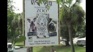 Repeat youtube video Alabama Gulf Coast Zoo: Animal Encounters