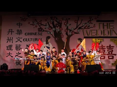Chinese Cultural Night 2014 (Wushu Performance)