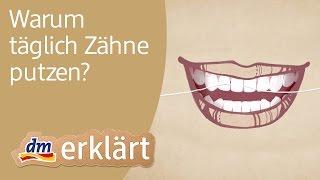 dm erklärt: Warum täglich Zähne putzen?