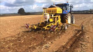 Claydon 3m Hybrid Direct Drilling Wheat Into Maize Stubble, Devon