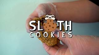 Sloth Cookies | AW Creates