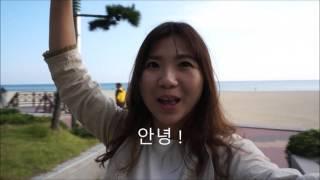 Hippo x Korea 2015