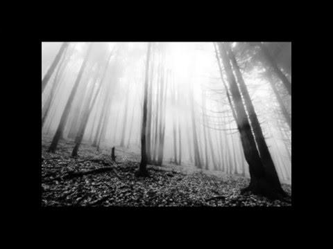Depressive / Atmospheric Black Metal 1
