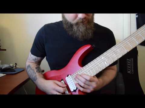 Plini Inhale Guitar Solo - Jesse Michel Cover