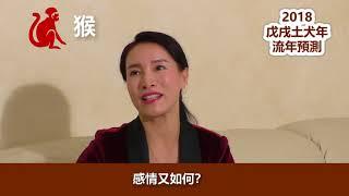 伍子明風水大師2018戊戍土犬年流年預測-猴