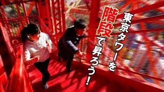 東京タワーでは、土・日・祝日限り大展望台への「昇り階段」を開放して...
