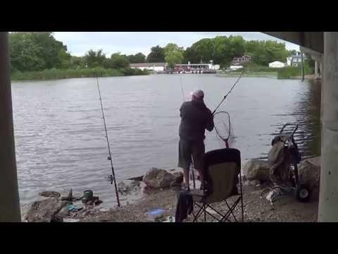 carpfishing in foxriver  (pesca de carpas  en foxriver)