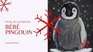 Portrait DESSIN Bébé Pingouin - Pastel et Panpastel