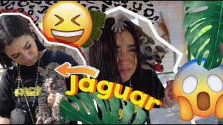 EL REY JULIEN (LEMÚR) COME PALETA!!!  Vlog en un ZOO