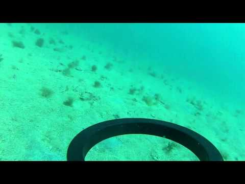 Underwater Metal Detecting - Gold Find