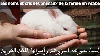 j'apprend les animaux de la ferme et leurs cris en Arabe pour bébé, les noms des animaux en arabe, l