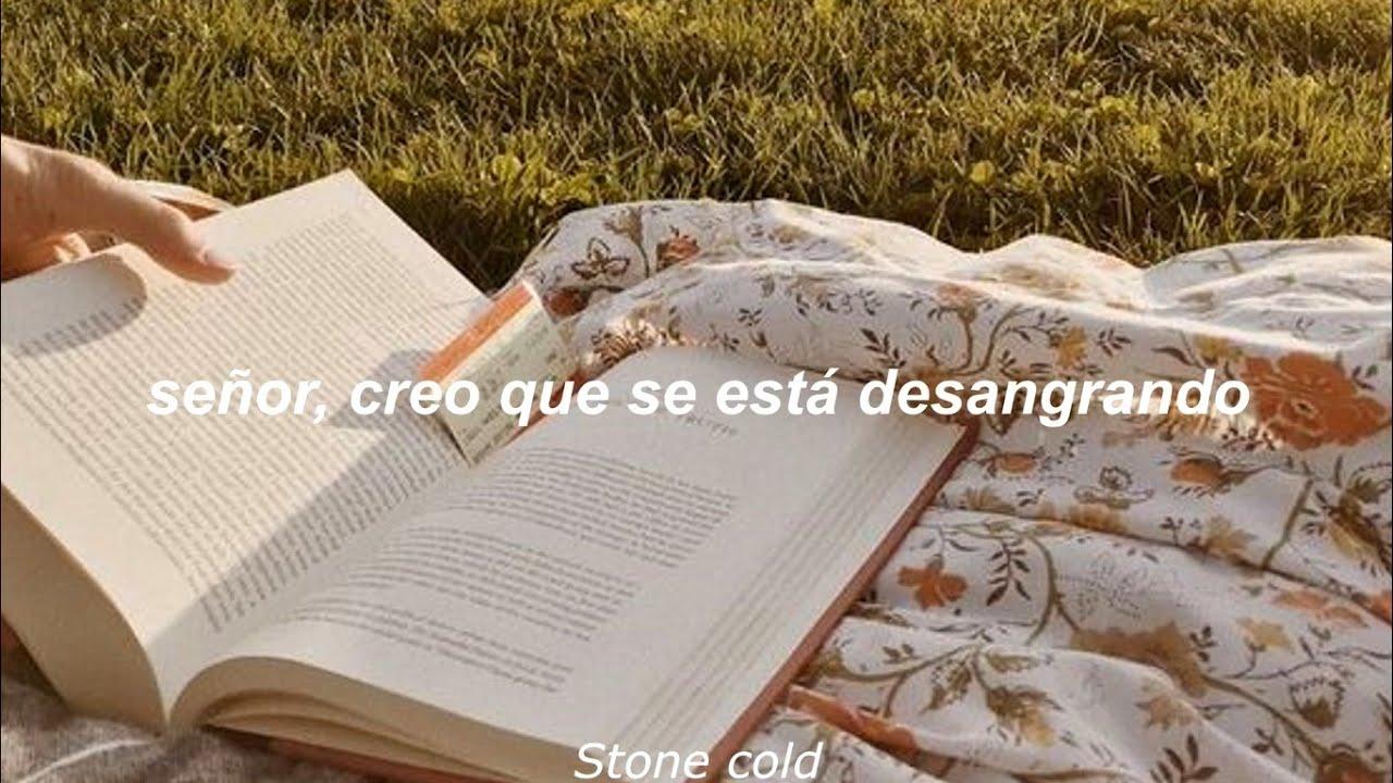 epiphany - Taylor Swift  (Español)