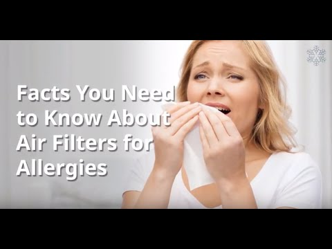 Facts About Air Filters for Allergies