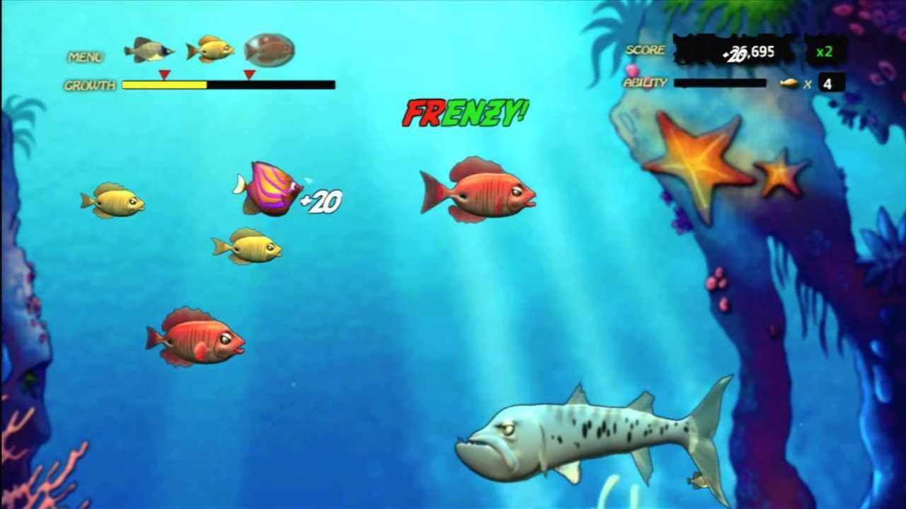 fish and frenzy