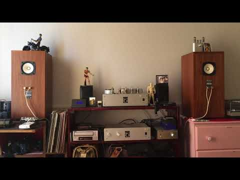Fostex FE103En Zigmahornet | FunnyCat TV